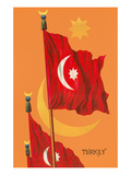 Flag of Turkey Posters