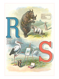 Alphabet Animals, R and S Prints