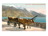 Ox Cart on Lago Di Garda, Italy Affiches