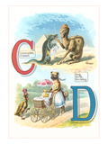 Alphabet Animals, C and D Prints