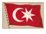 Old Egyptian Flag Prints