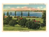Lake Nokomis, Minneapolis, Minnesota Poster