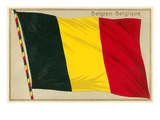 Flag of Belgium Art