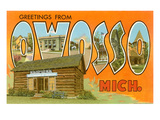 Greetings from Owosso, Michigan Prints