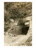 Mark Twain Cave, Hannibal, Missouri Poster