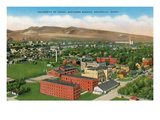 University of Idaho at Pocatello Posters