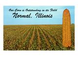 Outstanding Corn, Normal, Illinois Art