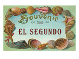 Seashells, Souvenir from El Segundo, California Prints