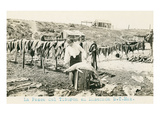 Drying Sharks in Ensenada, Mexico Print