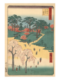 Cherry Trees in Japanese Park Posters