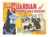 Advertisement for Mexican Rescue Dog Movie Print