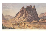 Mt. Sinai, Israelites Wandering in the Wilderness Posters