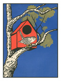 Bird Outside Birdhouse Poster