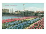 Heemstede Hyacinth Fields, Holland Affiches