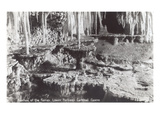 Fountain of the Fairies, Carlsbad Caverns, New Mexico Prints