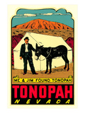 Tonopah, Nevada Decal Poster