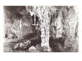 First Spring, Carlsbad Caverns, New Mexico Posters
