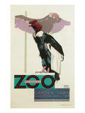 Buzzards, London Zoo Posters