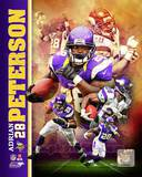 Adrian Peterson 2013 Portrait Plus Photo