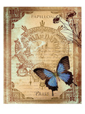 Paris Butterflies 1 Prints by Malcolm Watson