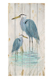 Blue Heron Duo Posters by Arnie Fisk