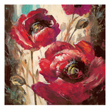Dramatic Poppy Poster by Brent Heighton