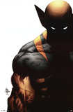 Wolverine Shadow Comics Poster Poster