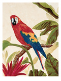 Tropical Red Stampa giclée di Colleen Sarah