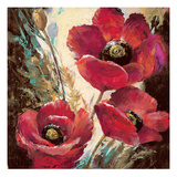 Influential Poppy Giclee Print by Brent Heighton