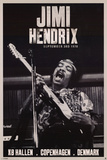 Jimi Hendrix Copenhagen 1970 Music Poster Photo
