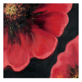Sparkling Poppy 2 Prints by  DB Studios