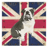 British Bulldog Reproduction procédé giclée par Sam Appleman