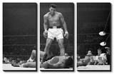 Muhammad Ali-Liston  Art
