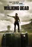 The Walking Dead - Season 3 Jailhouse TV Poster Print