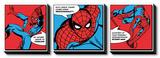 Spiderman - Spider Sense Prints