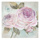 Rose Shimmer Prints by Stefania Ferri