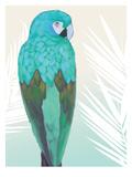 Tropical Bird 1 Posters par Marco Fabiano
