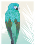 Tropical Bird 1 Premium Giclee Print by Marco Fabiano