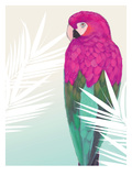 Tropical Bird 2 Giclee Print by Marco Fabiano
