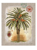Linen Date Palm Tree Giclee Print by Chad Barrett