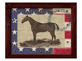 American Equestrian Reproduction procédé giclée par Sam Appleman