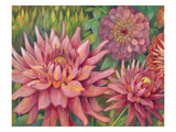 Dahlia Profile 2 Prints by Vera Hills