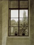 Window with View of a Park Kunstdrucke von Caspar David Friedrich