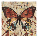 Butterfly Beauty 2 Prints by Melissa Pluch