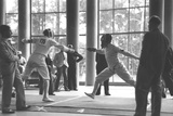 1936 Berlin Olympic Games' Men's Team Foil Fencing Reproduction photographique