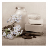 Hydrangea and Soap Prints by Julie Greenwood