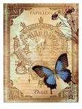 Paris Buterflies 1 Póster por Malcolm Watson