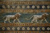Lions, Ishtar Gate, Babylon Fotodruck