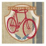 Cycling Team Kunst van Sam Appleman
