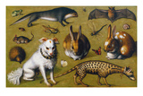 Animal Picture with Genet, c.1560 Premium Giclee Print by Ludger Ring